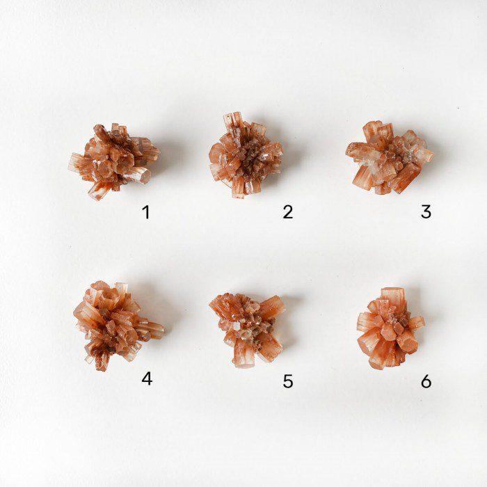 drusa de aragonito estrellado pequeño