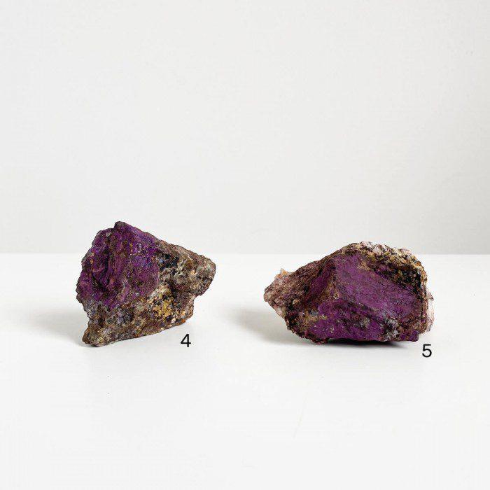 purpurita-2